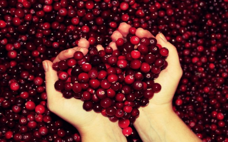 Berries – More than a pretty antioxidant
