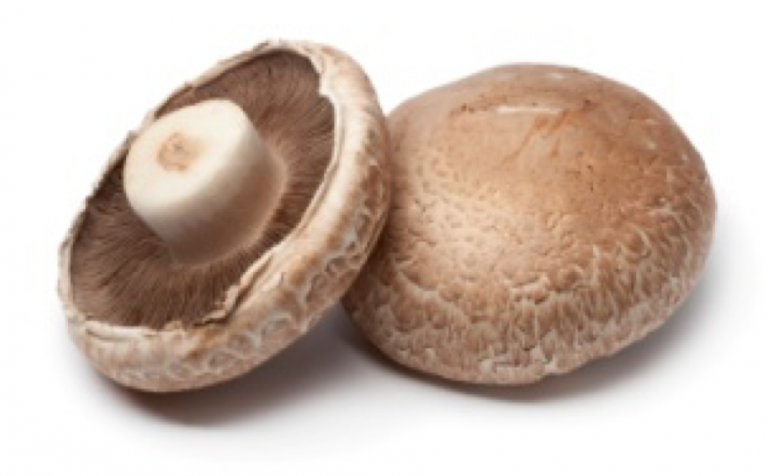 Discerning fact from fiction : Mushrooms and iodine